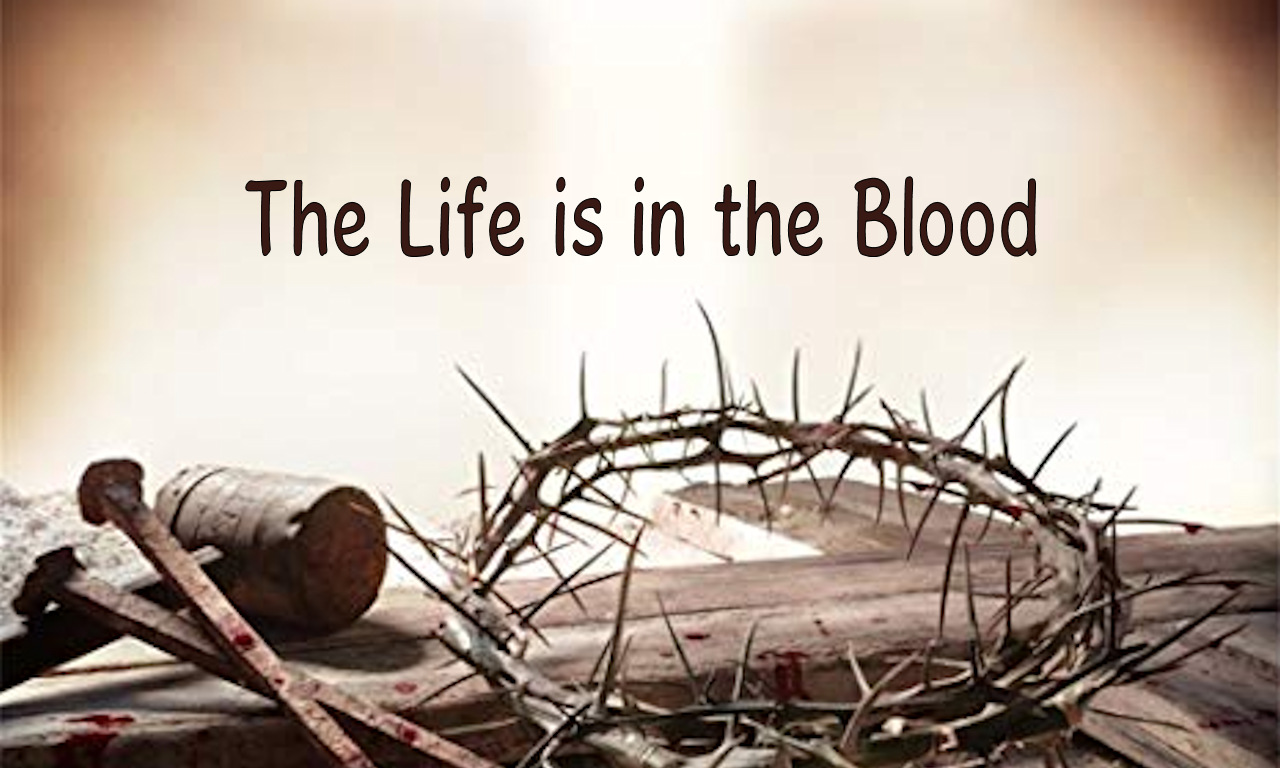 The Life is in the Blood